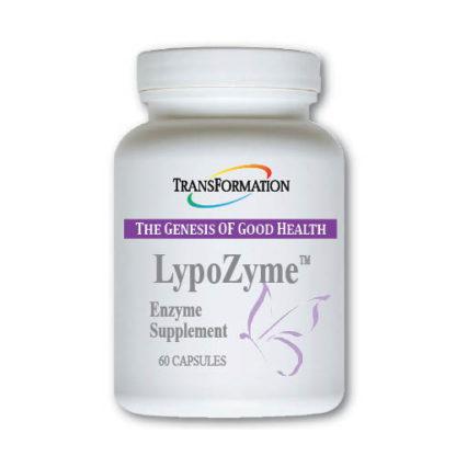 Ферменты LypoZyme (60)